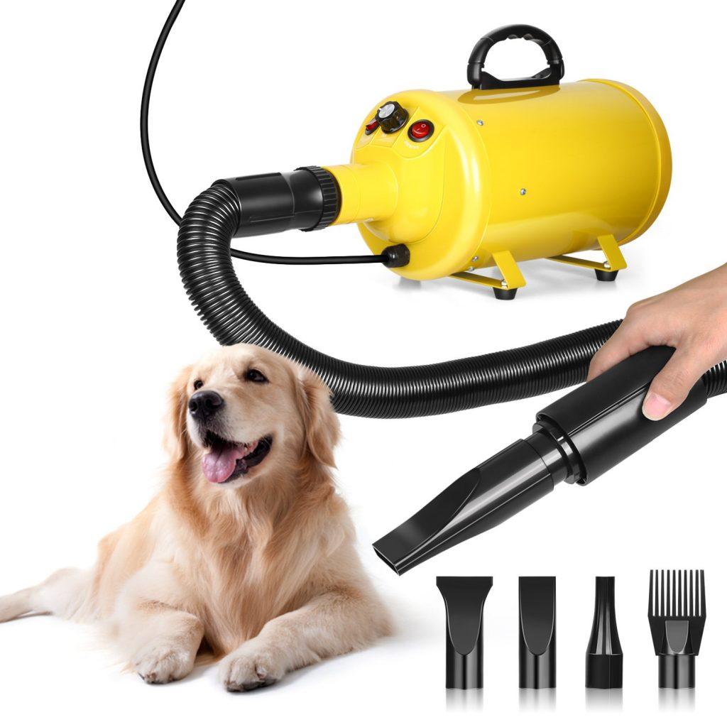 Soffiatore per cani Golden Retriever